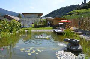 Teich,Berge 140